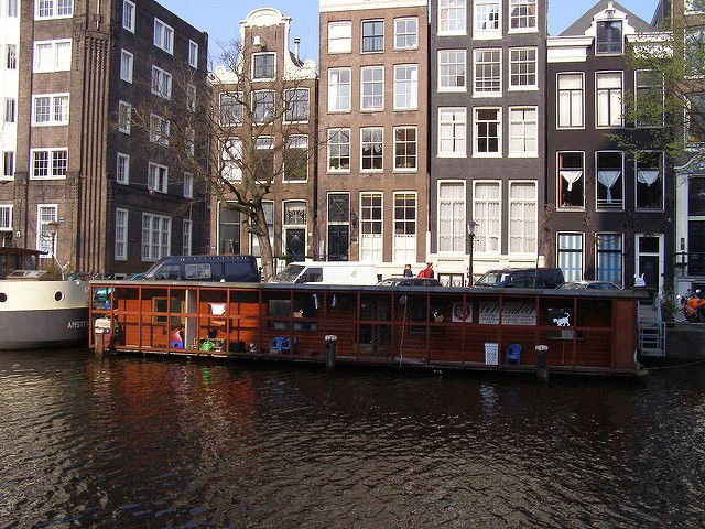 Cat-Boat-Amsterdam2
