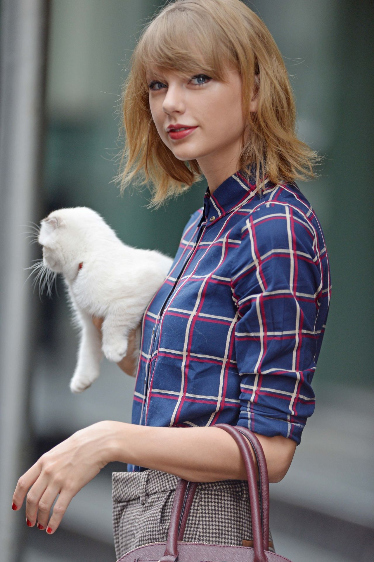 Taylor-Swift-and-Her-Adorable-Scottish-Fold-Cats