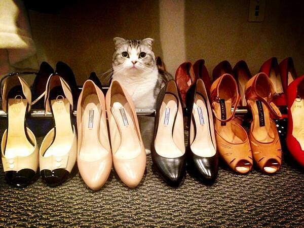 When-Meredith-got-hang-out-shoe-collection-costs-more-than-your-yearly-rent