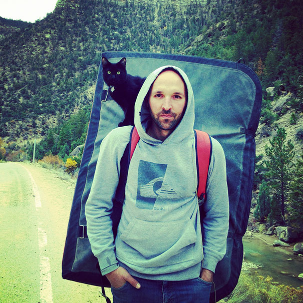 camping-with-cats-ryan-carter-60-579219b005820__605