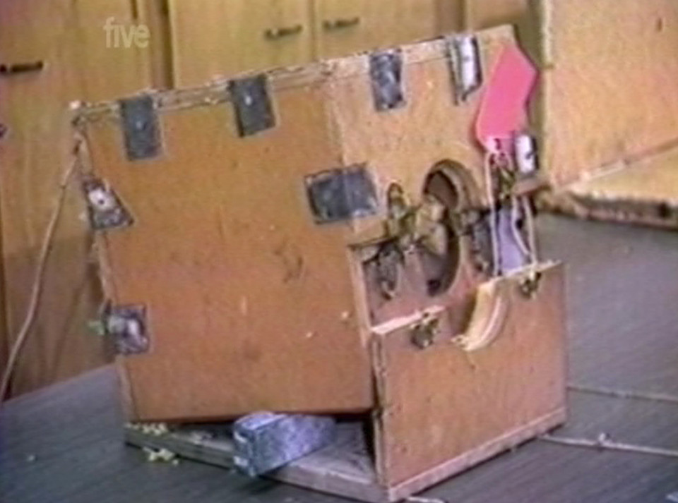 A woman held captive in a coffin-like box for seven years has spoken about her horrific ordeal