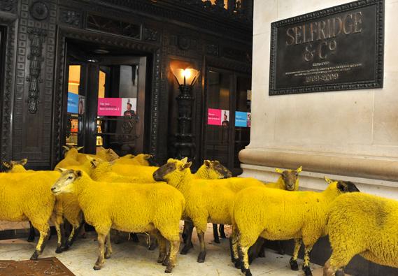 wool_week_at_selfridges_0