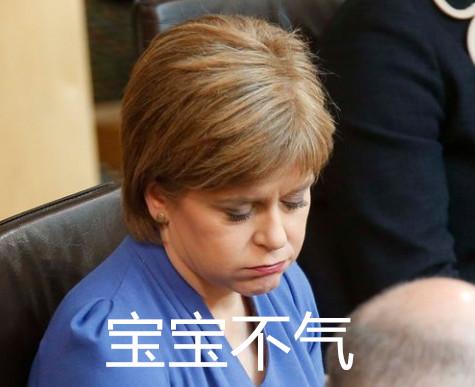 苏格兰领袖1
