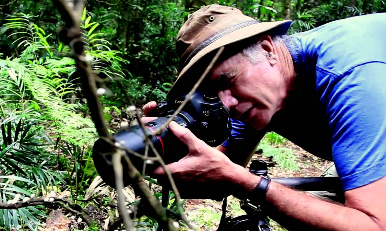 steve-axford-exquisitely-beautiful-images-of-fungi-in-the-australian-bush-theflyingtortoise-012