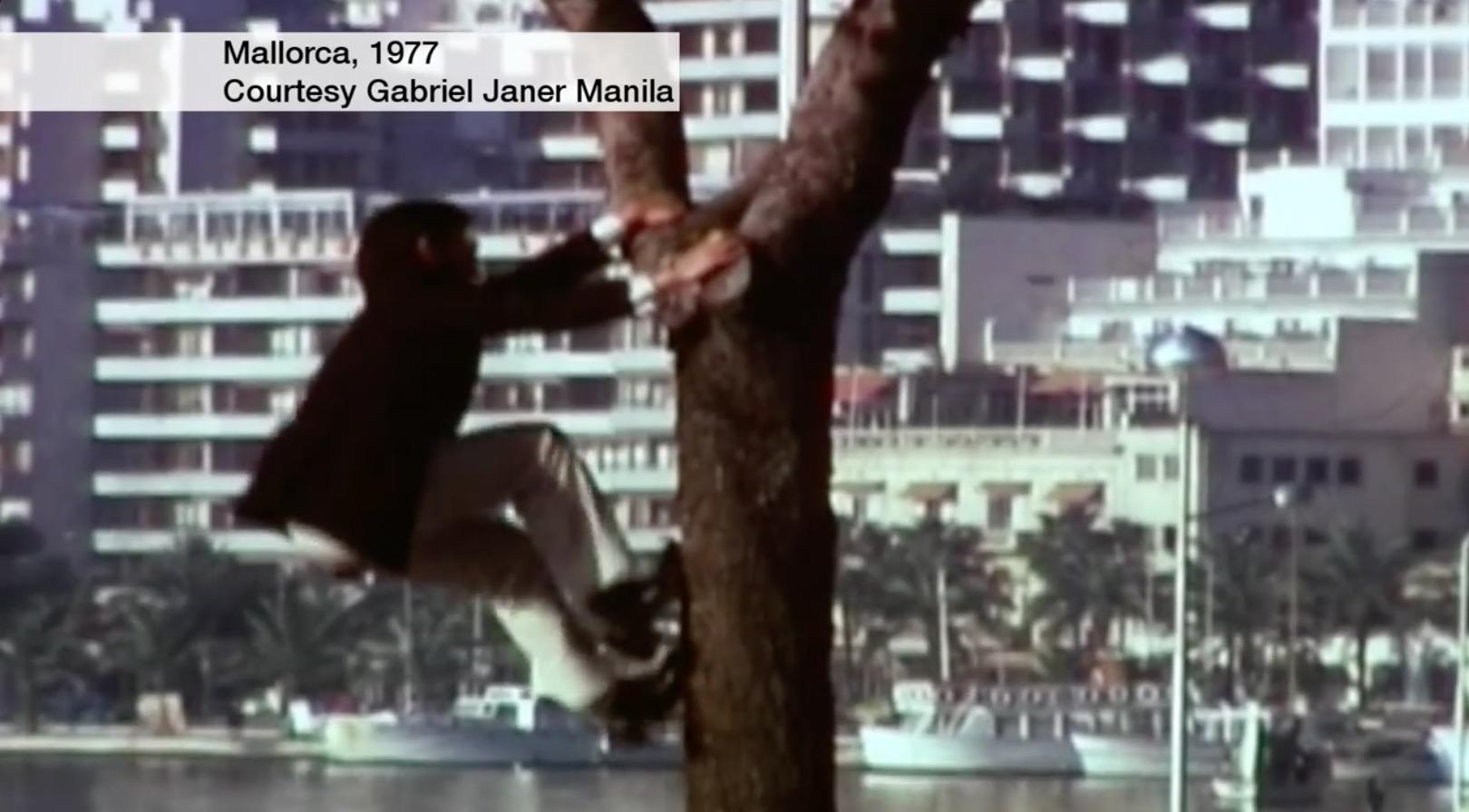 1977年马洛卡