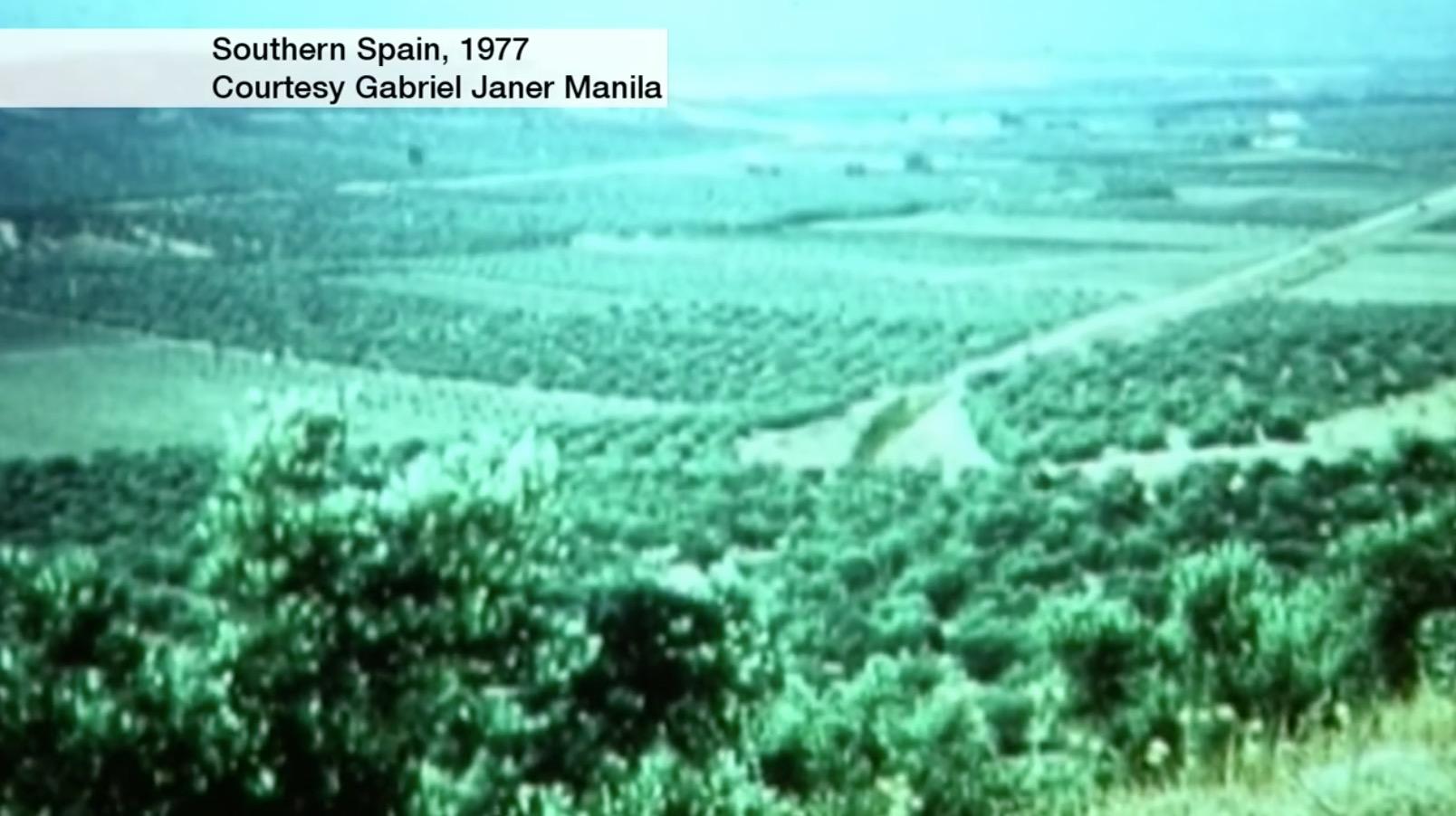 1977年,Gabriel Janer Manila