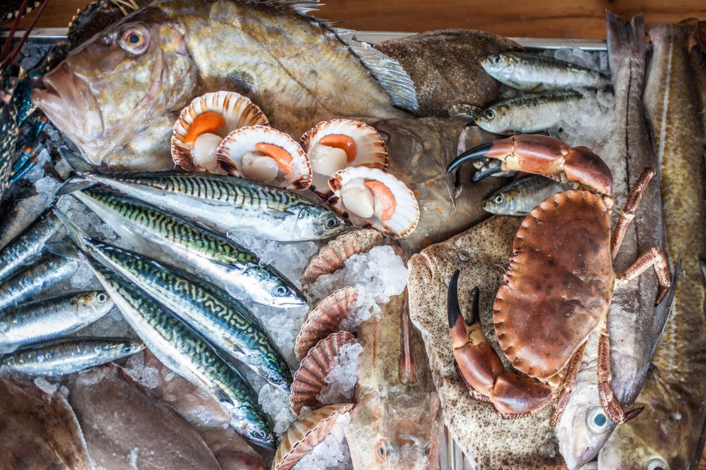 David-Griffen-Photography_Padstow-Seafood-School-86981-1024x682