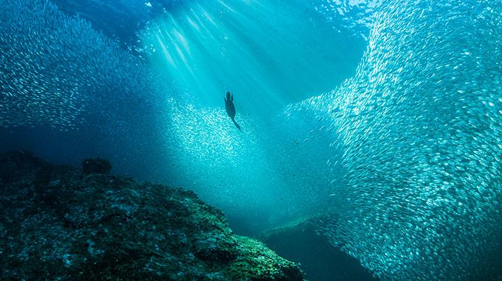 oceans-main