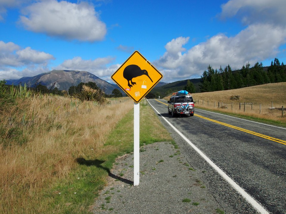 new-zealand-a-sign-warning-about-kiwi-crossings