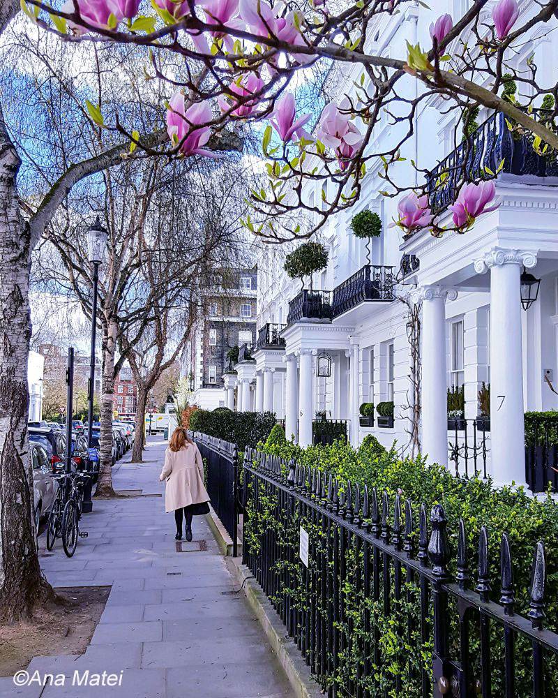 Sprin-in-Lodon-Chelsea-by-Ana-Matei