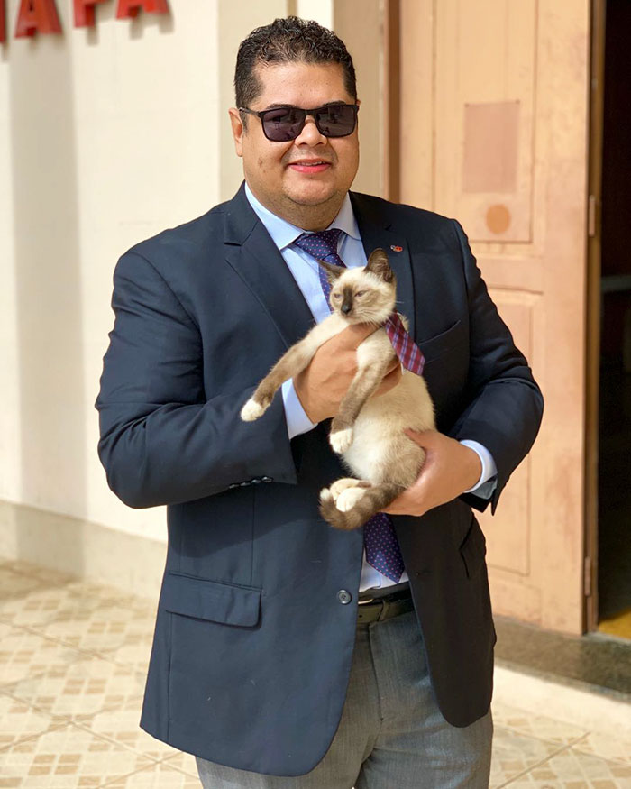 homeless-cat-hired-employee-dr-leon-advogato-13-5d88a9b5f217c__700