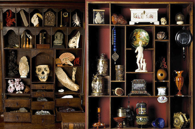 culture-for-dummies-cabinet-of-curiosities-4