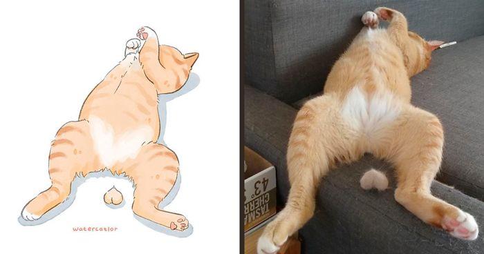 digital-watercolor-cat-paintings-watercatlor-fb54-png__700 (1)