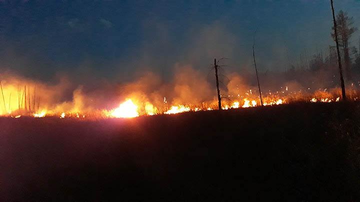 Wildfire near Lesnaya station